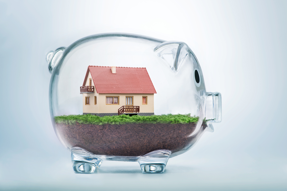 immobiliere vanesse conseils immobiliers