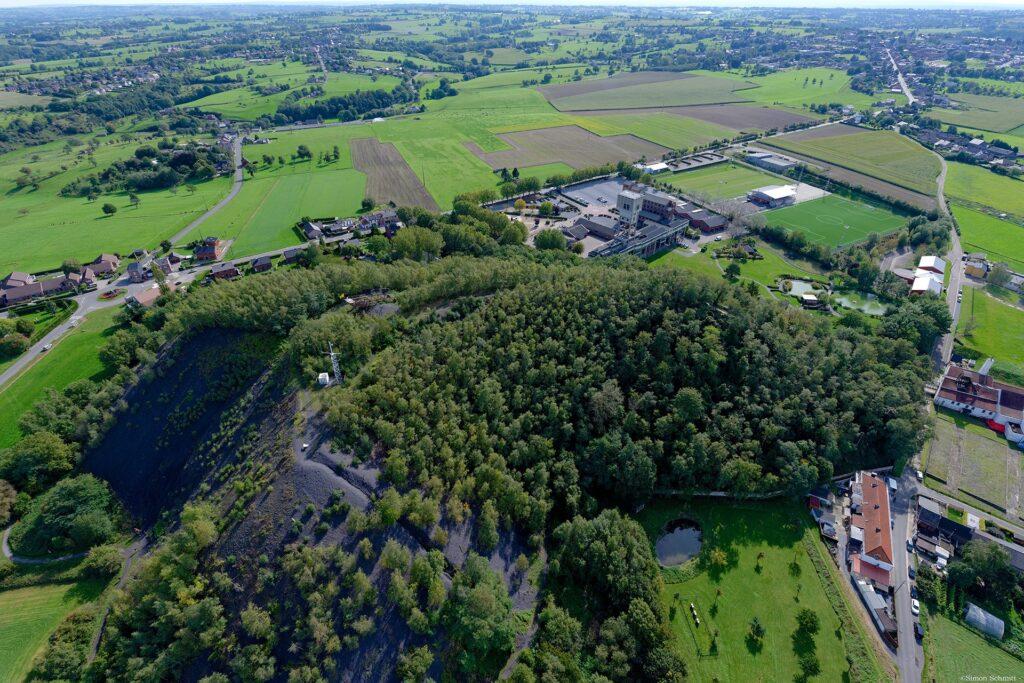 Terril - Blegny-Mine - Visite guidée du biotope du terril - Immobilière Vanesse